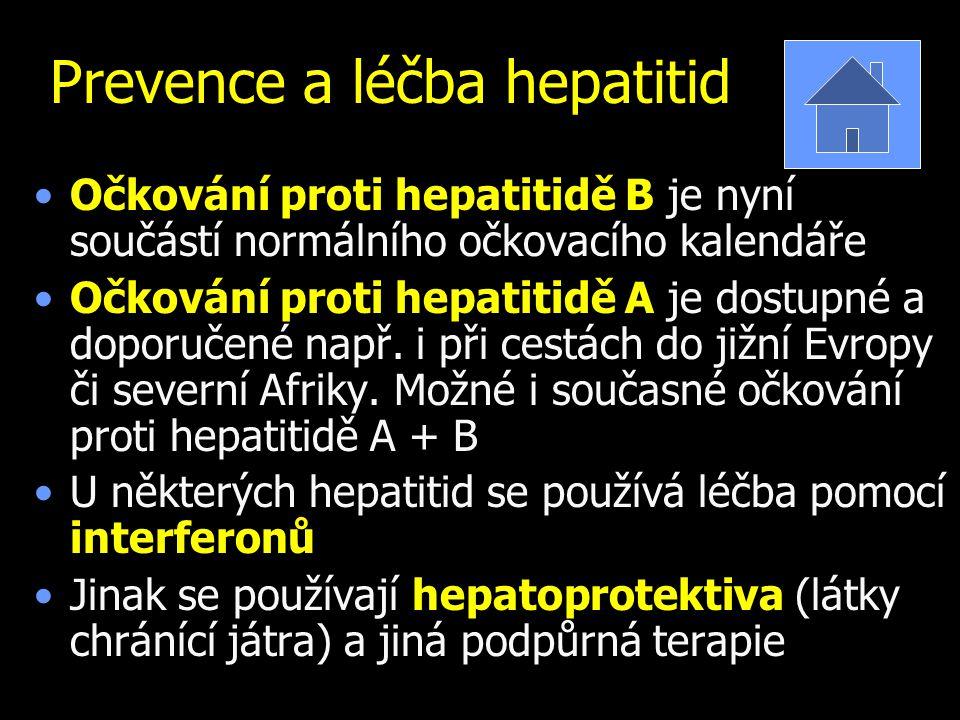 Prevence a léčba hepatitid