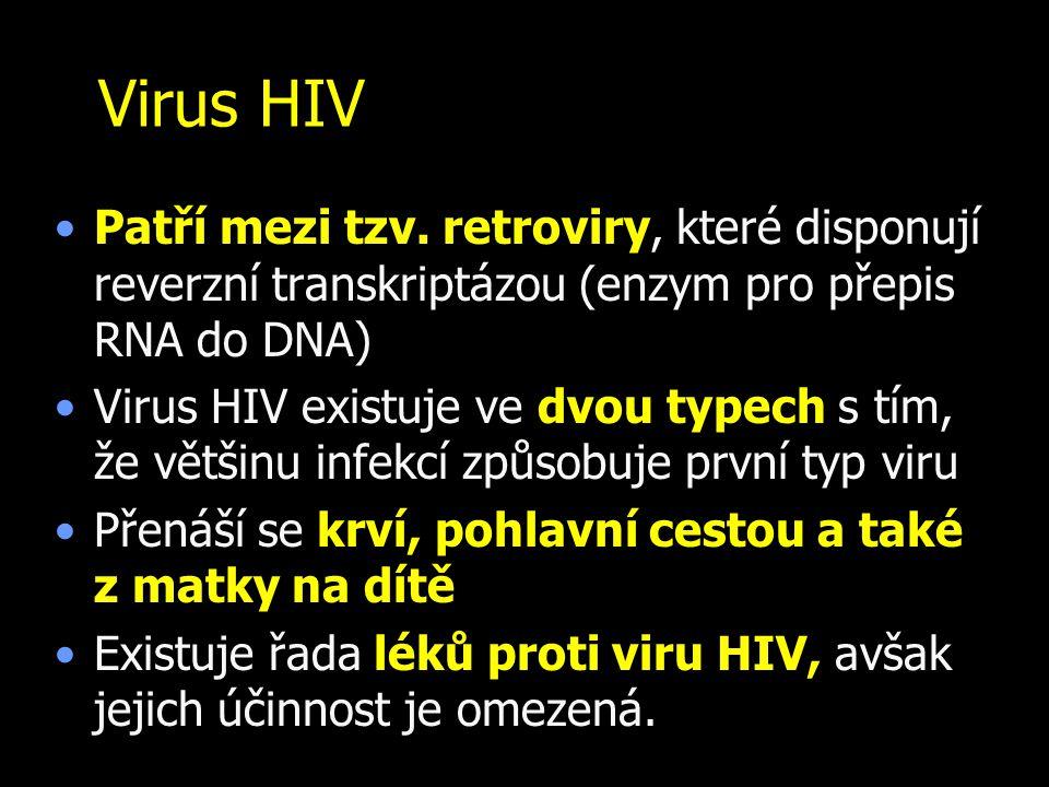 Virus HIV Patří mezi tzv. retroviry, které disponují reverzní transkriptázou (enzym pro přepis RNA do DNA)