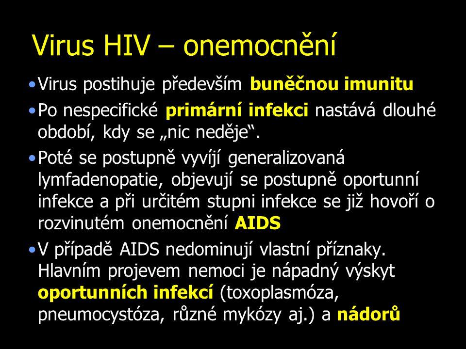 Virus HIV – onemocnění Virus postihuje především buněčnou imunitu