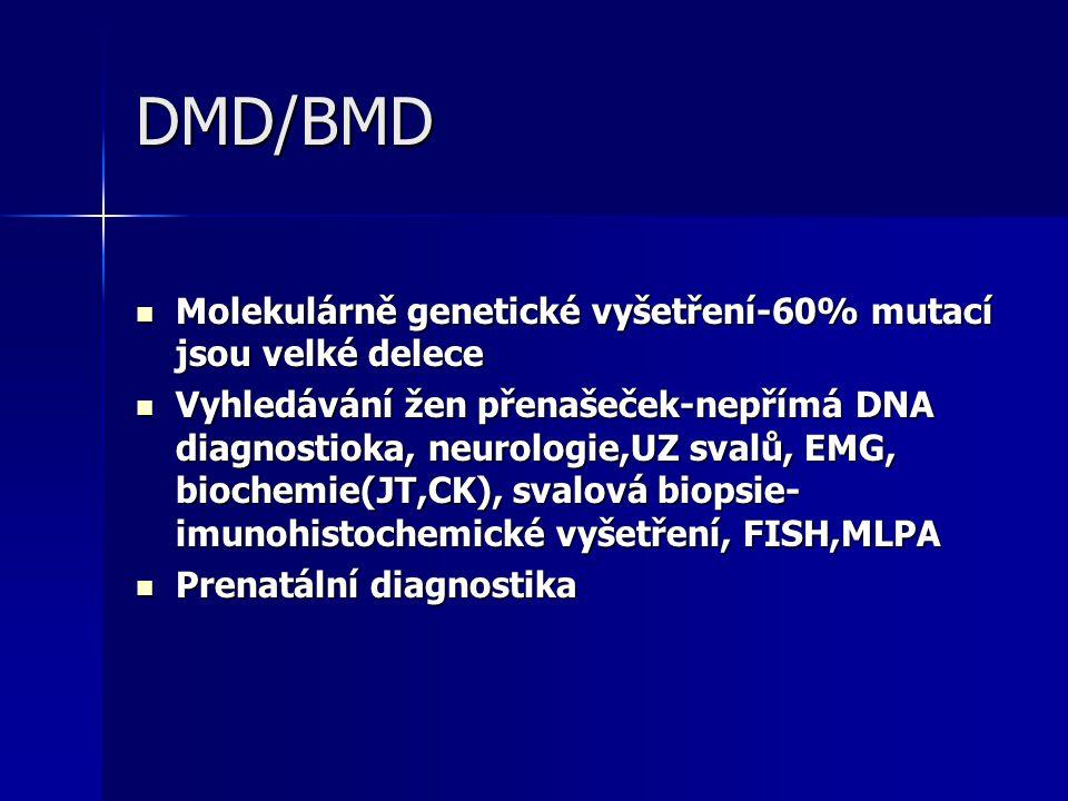 DMD/BMD Molekulárně genetické vyšetření-60% mutací jsou velké delece