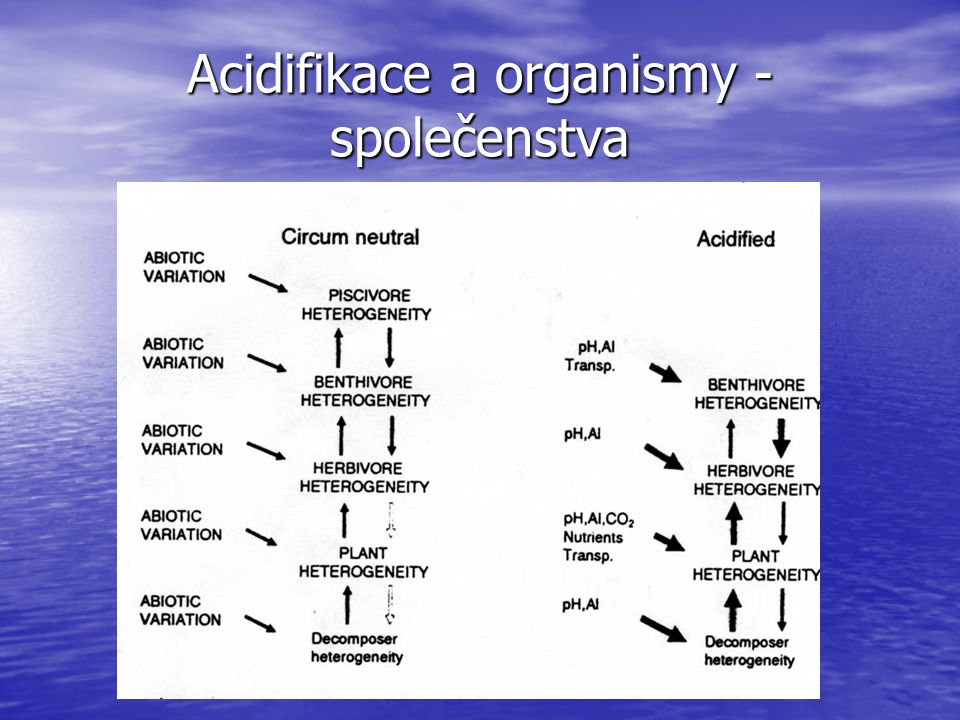 Acidifikace a organismy - společenstva