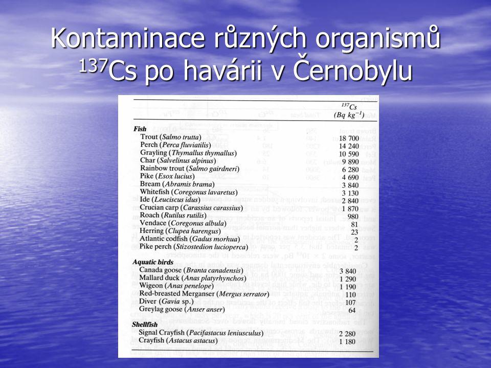 Kontaminace různých organismů 137Cs po havárii v Černobylu