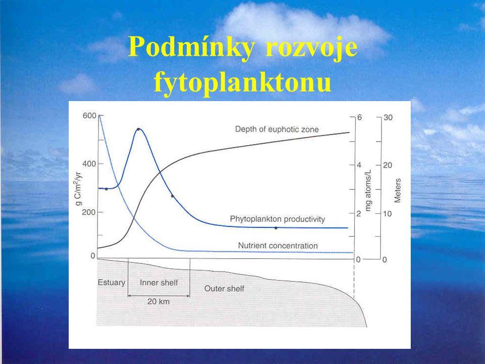 Podmínky rozvoje fytoplanktonu