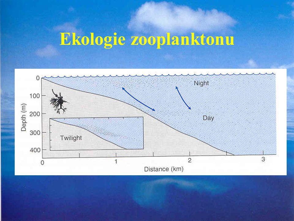 Ekologie zooplanktonu