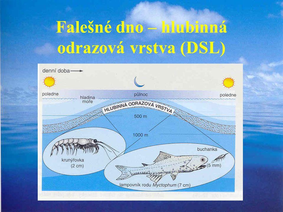 Falešné dno – hlubinná odrazová vrstva (DSL)