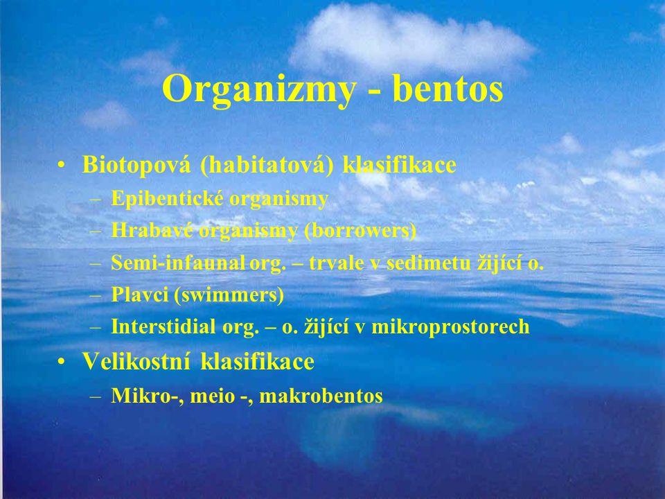 Organizmy - bentos Biotopová (habitatová) klasifikace