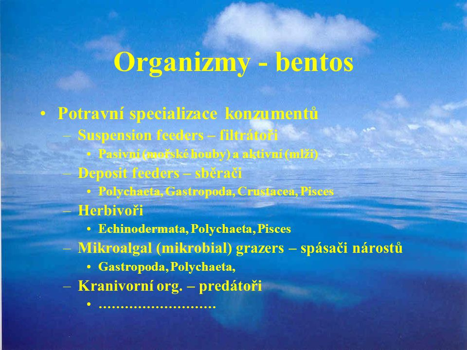 Organizmy - bentos Potravní specializace konzumentů