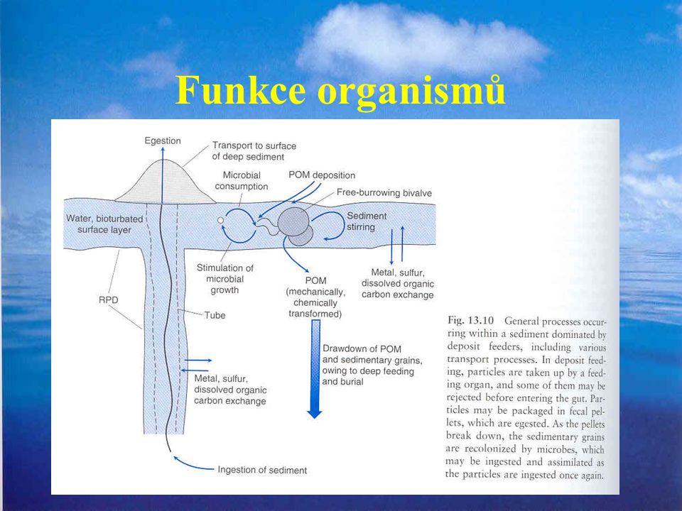 Funkce organismů