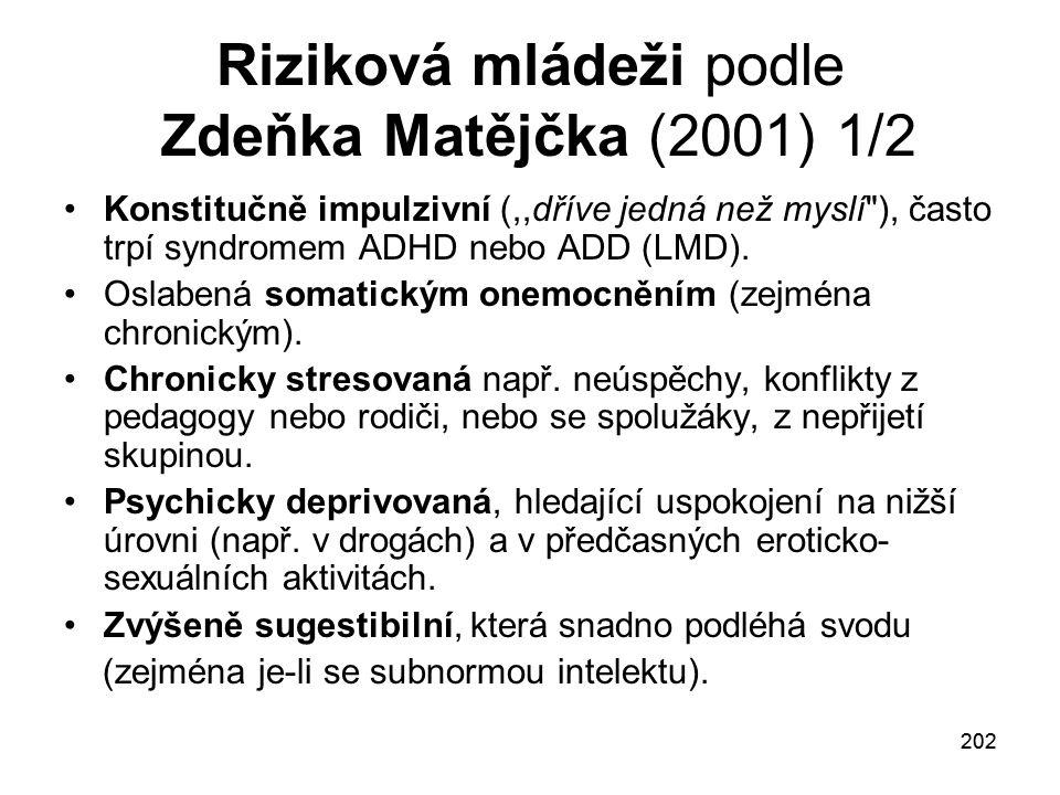 Riziková mládeži podle Zdeňka Matějčka (2001) 1/2
