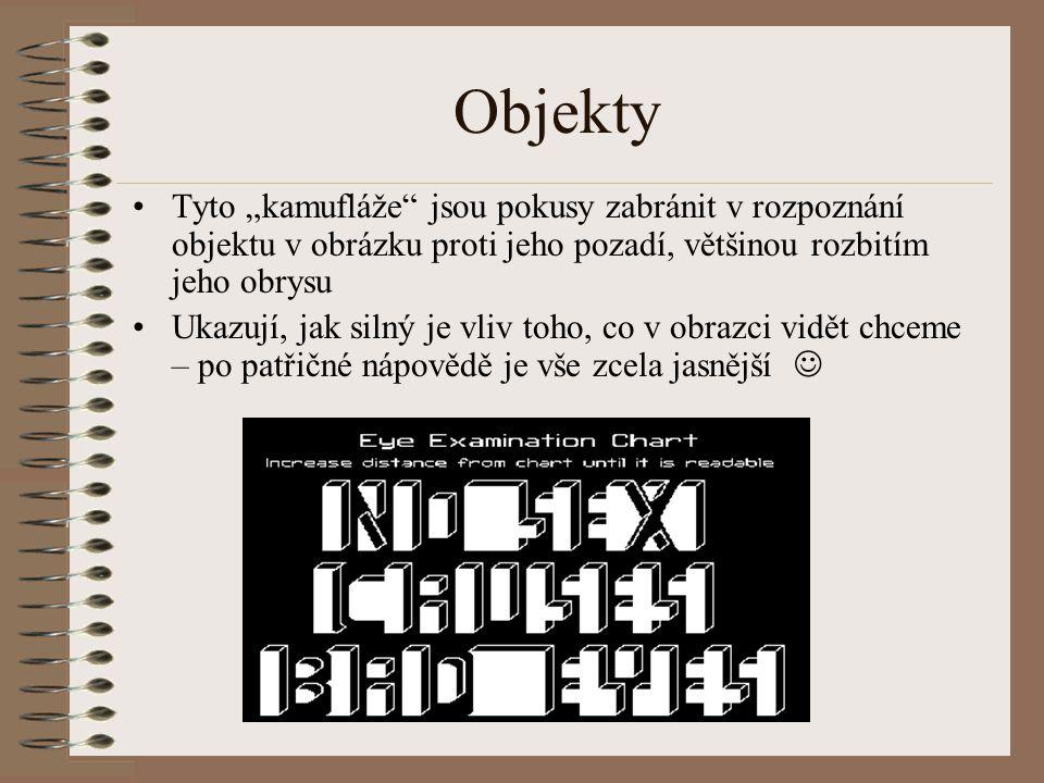 """Objekty Tyto """"kamufláže jsou pokusy zabránit v rozpoznání objektu v obrázku proti jeho pozadí, většinou rozbitím jeho obrysu."""