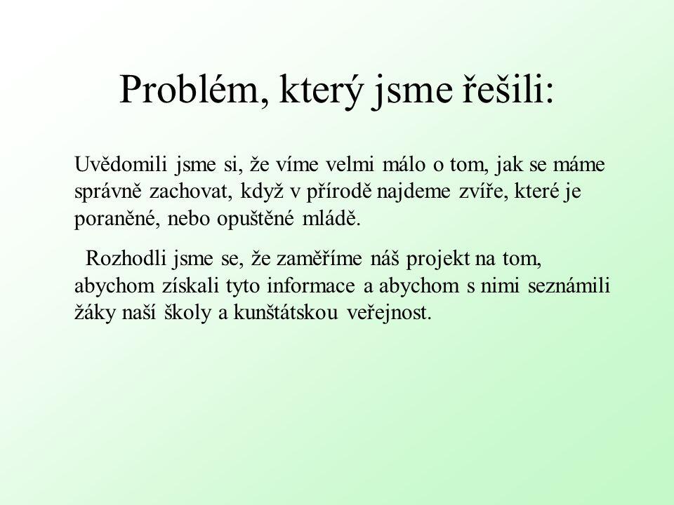 Problém, který jsme řešili: