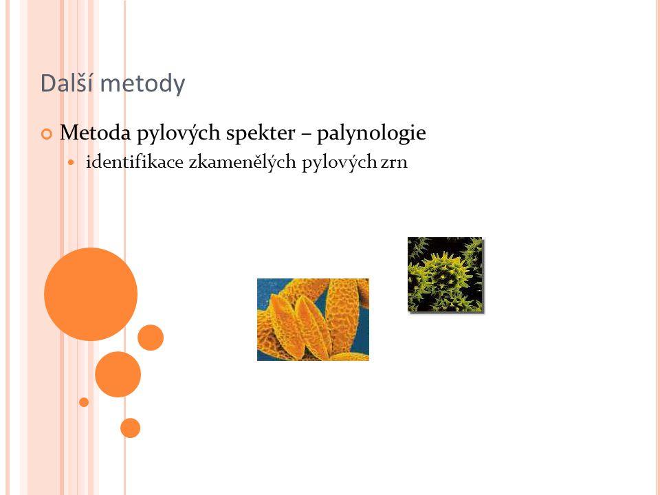 Další metody Metoda pylových spekter – palynologie