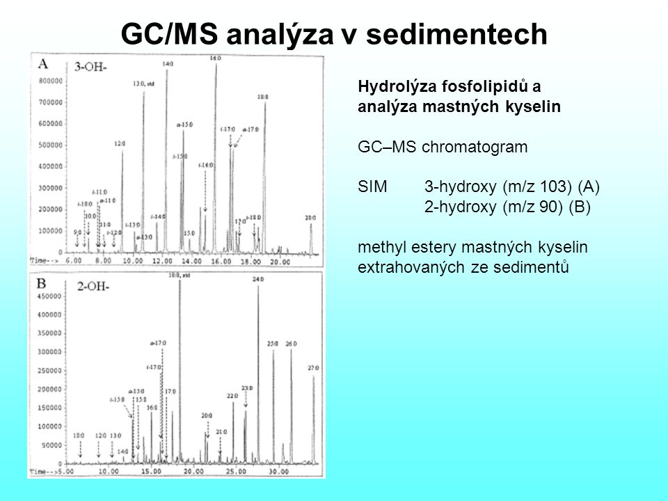 GC/MS analýza v sedimentech
