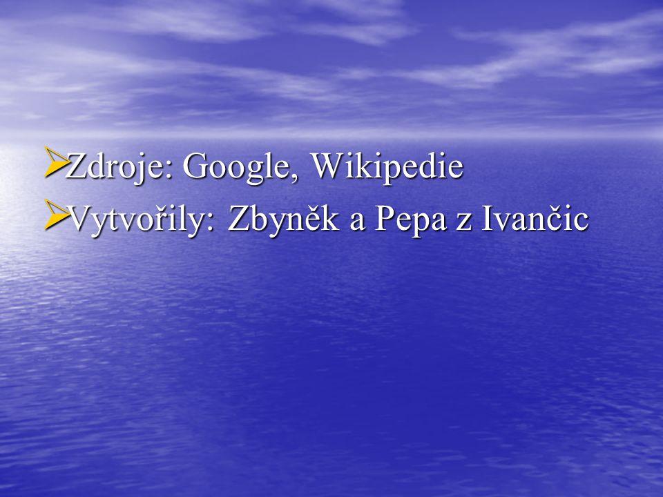 Zdroje: Google, Wikipedie