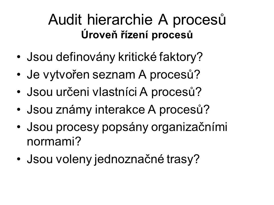 Audit hierarchie A procesů Úroveň řízení procesů