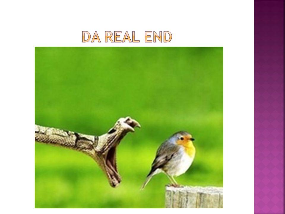 Da real End