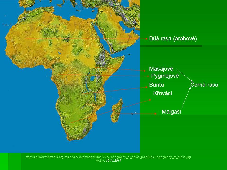 Bílá rasa (arabové) Masajové Pygmejové Bantu Černá rasa Křováci