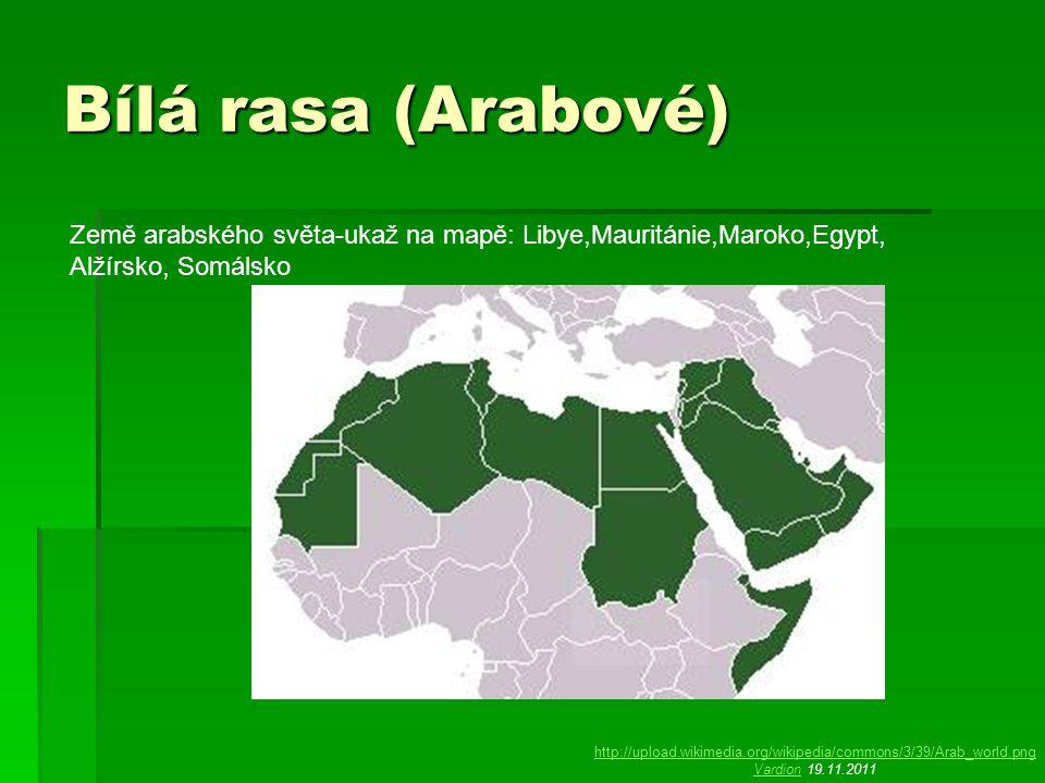 Bílá rasa (Arabové) Země arabského světa-ukaž na mapě: Libye,Mauritánie,Maroko,Egypt, Alžírsko, Somálsko.