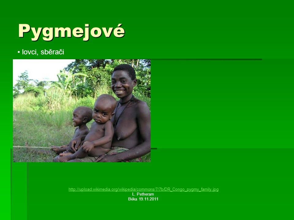Pygmejové lovci, sběrači
