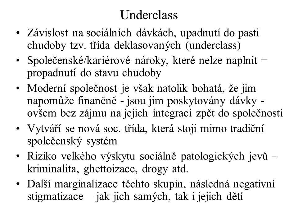 Underclass Závislost na sociálních dávkách, upadnutí do pasti chudoby tzv. třída deklasovaných (underclass)