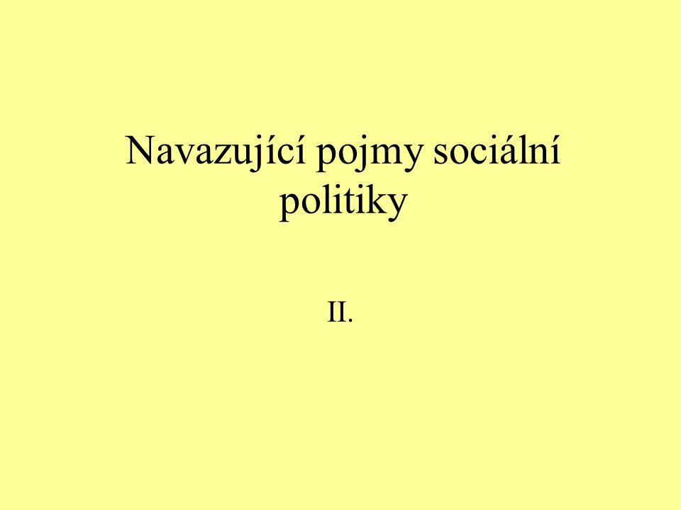 Navazující pojmy sociální politiky