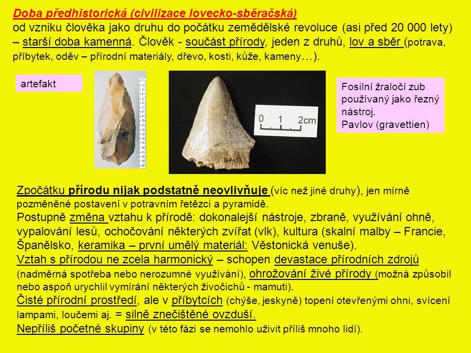 Doba předhistorická (civilizace lovecko-sběračská)