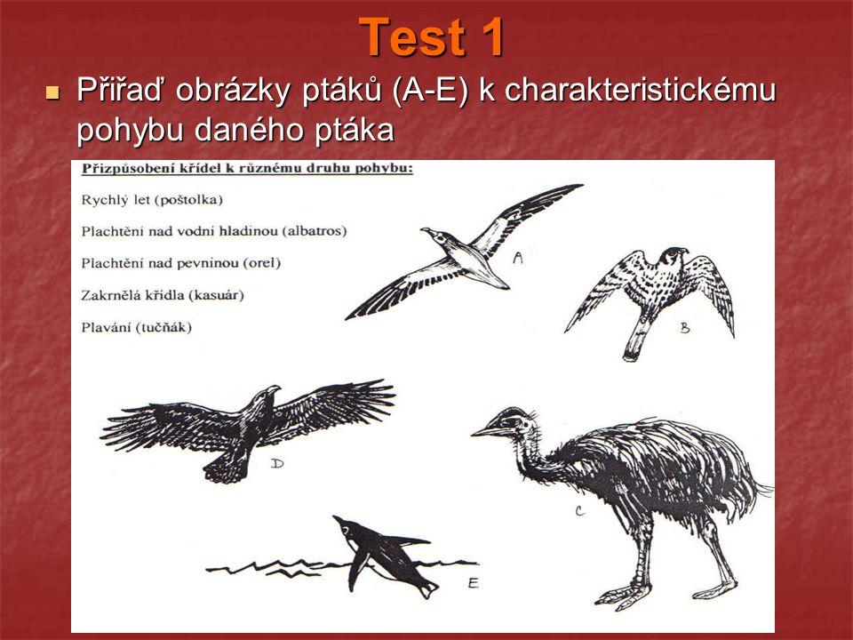 Test 1 Přiřaď obrázky ptáků (A-E) k charakteristickému pohybu daného ptáka