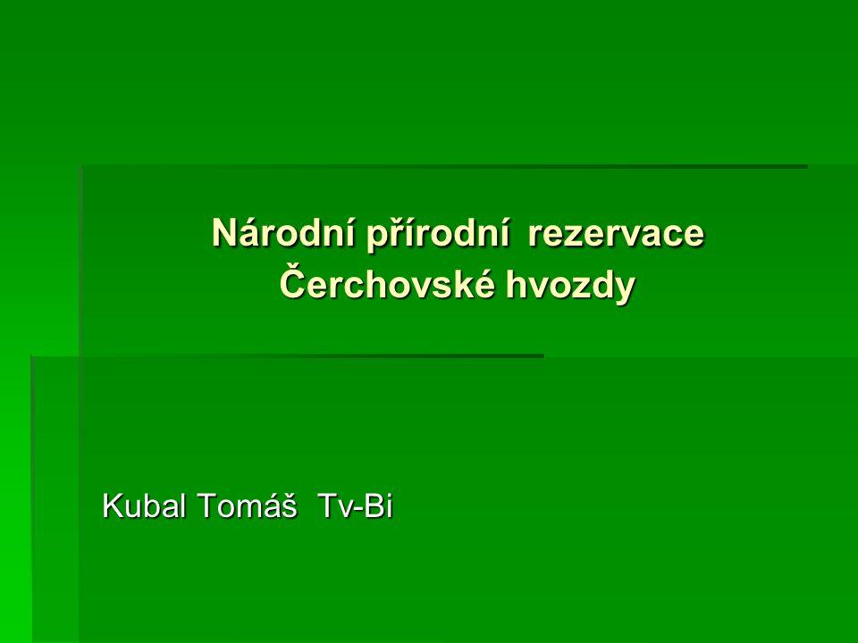 Národní přírodní rezervace Čerchovské hvozdy