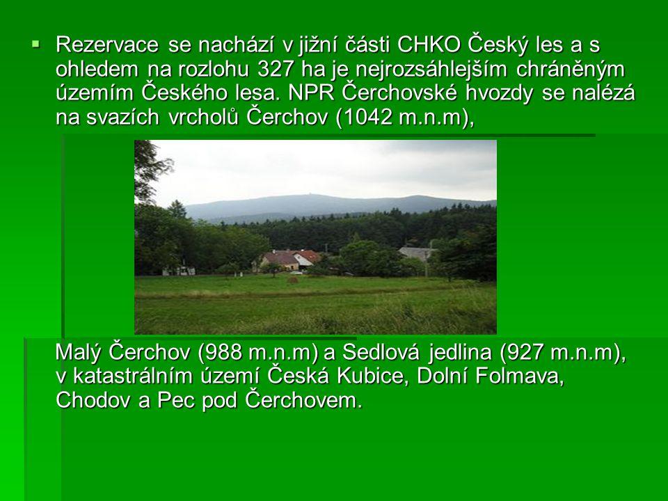 Rezervace se nachází v jižní části CHKO Český les a s ohledem na rozlohu 327 ha je nejrozsáhlejším chráněným územím Českého lesa. NPR Čerchovské hvozdy se nalézá na svazích vrcholů Čerchov (1042 m.n.m),