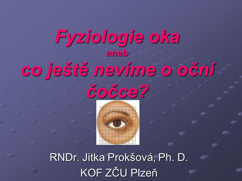 Fyziologie oka aneb co ještě nevíme o oční čočce