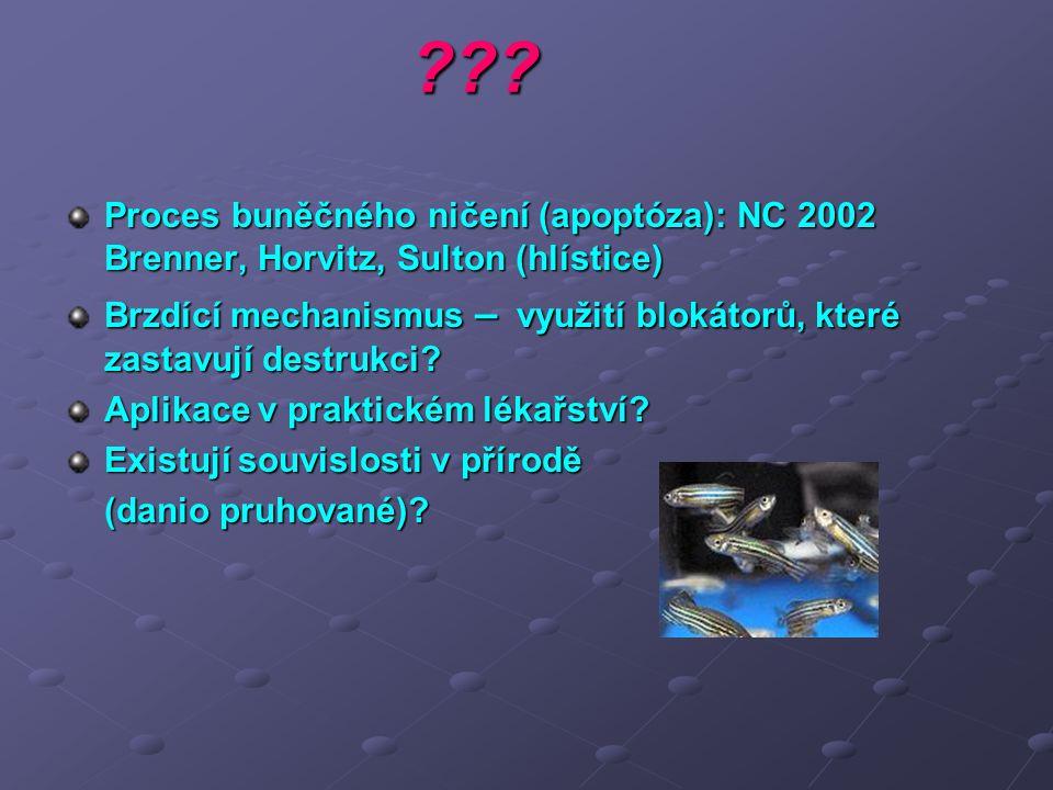 Proces buněčného ničení (apoptóza): NC 2002 Brenner, Horvitz, Sulton (hlístice)