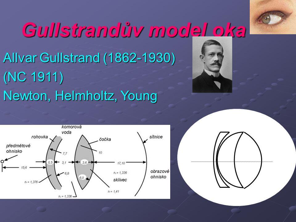 Gullstrandův model oka