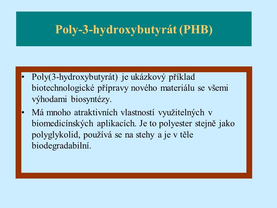 Poly-3-hydroxybutyrát (PHB)