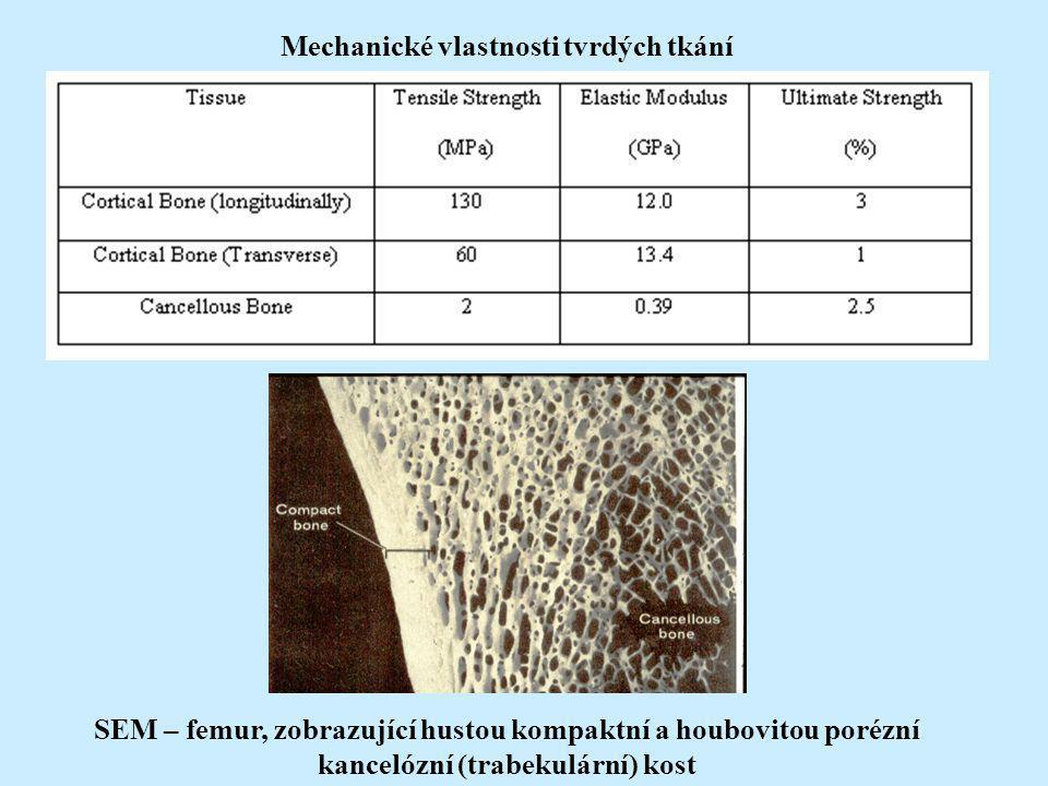 Mechanické vlastnosti tvrdých tkání