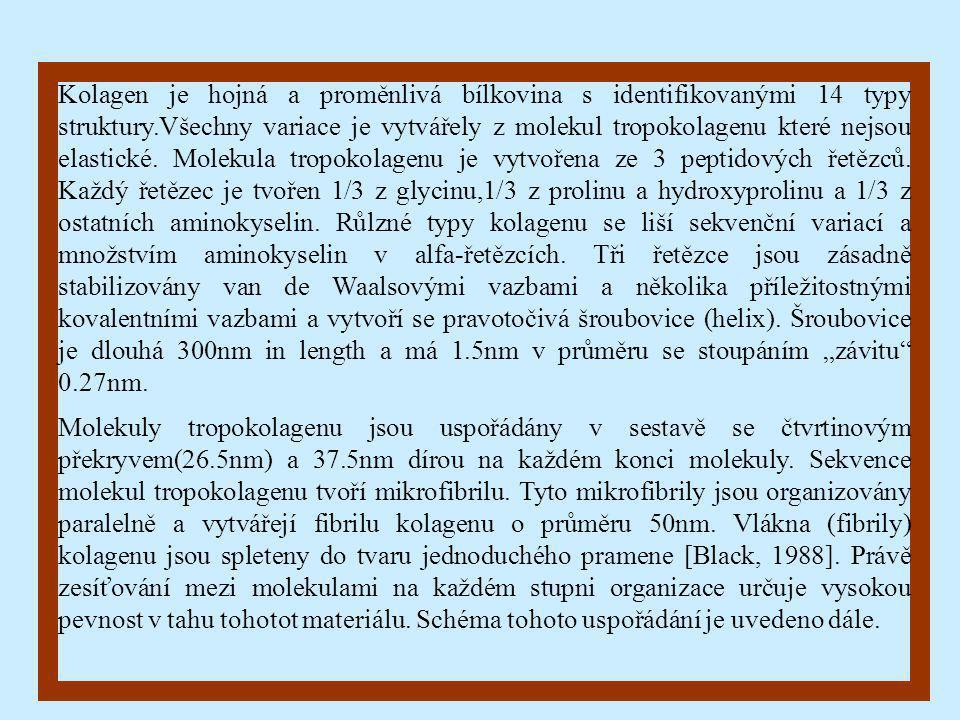 """Kolagen je hojná a proměnlivá bílkovina s identifikovanými 14 typy struktury.Všechny variace je vytvářely z molekul tropokolagenu které nejsou elastické. Molekula tropokolagenu je vytvořena ze 3 peptidových řetězců. Každý řetězec je tvořen 1/3 z glycinu,1/3 z prolinu a hydroxyprolinu a 1/3 z ostatních aminokyselin. Růlzné typy kolagenu se liší sekvenční variací a množstvím aminokyselin v alfa-řetězcích. Tři řetězce jsou zásadně stabilizovány van de Waalsovými vazbami a několika příležitostnými kovalentními vazbami a vytvoří se pravotočivá šroubovice (helix). Šroubovice je dlouhá 300nm in length a má 1.5nm v průměru se stoupáním """"závitu 0.27nm."""