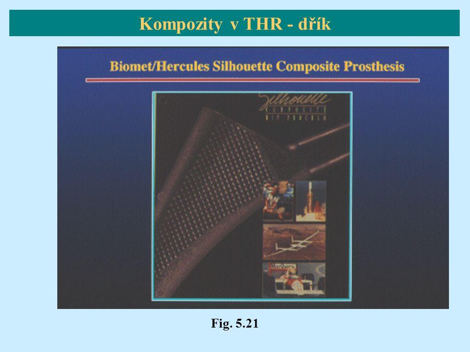 Kompozity v THR - dřík Fig. 5.21