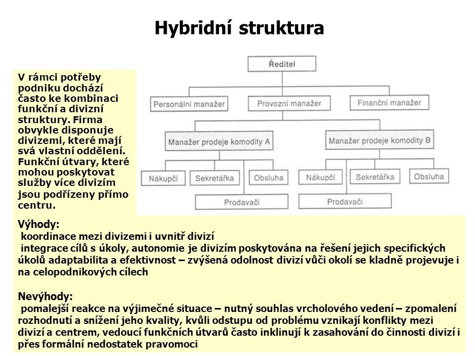 Hybridní struktura Výhody: Nevýhody: