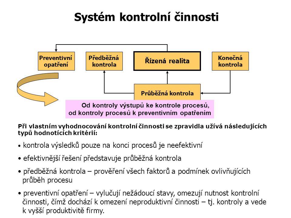 Systém kontrolní činnosti