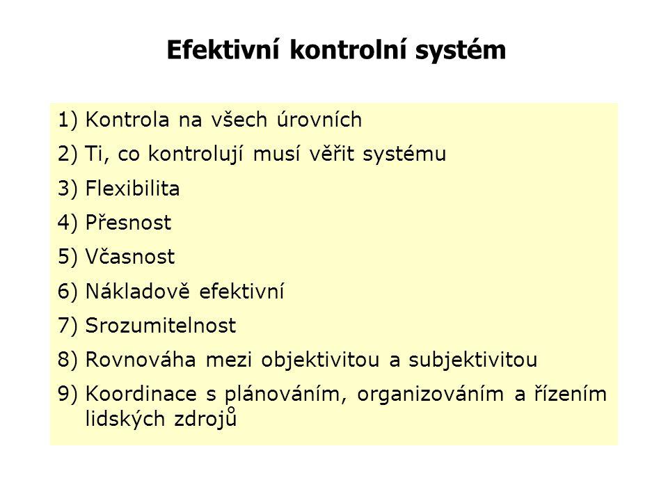 Efektivní kontrolní systém