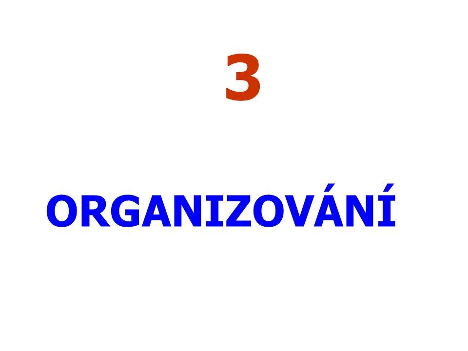 3 ORGANIZOVÁNÍ