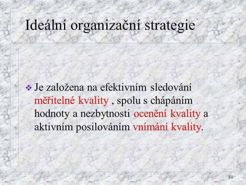 Ideální organizační strategie