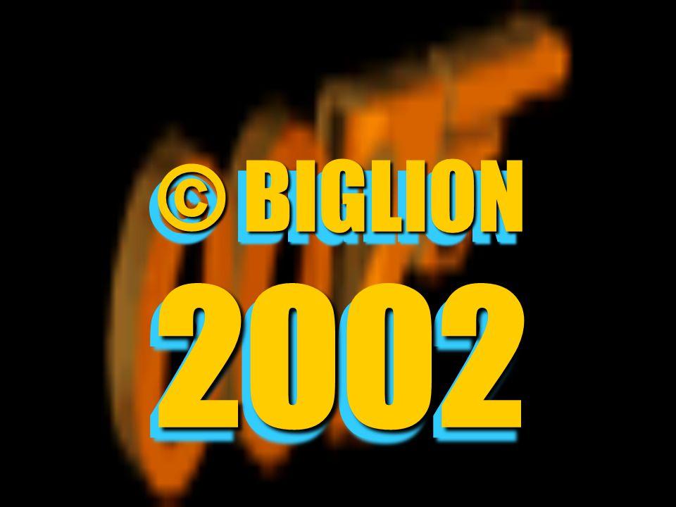 © BIGLION 2002