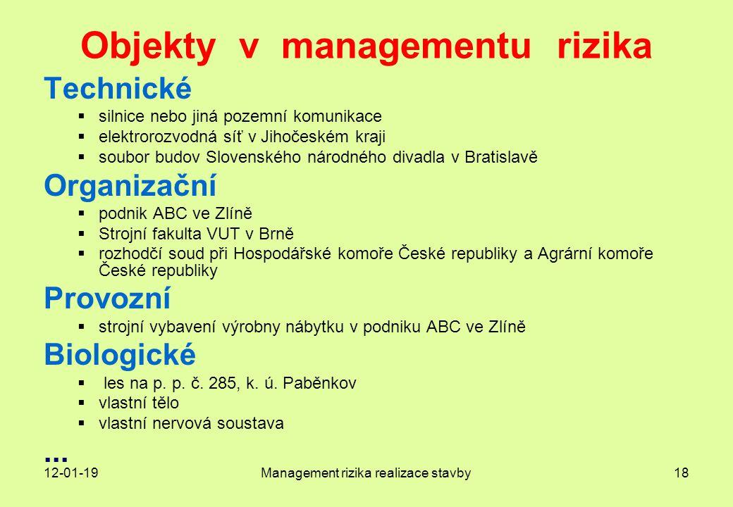 Objekty v managementu rizika