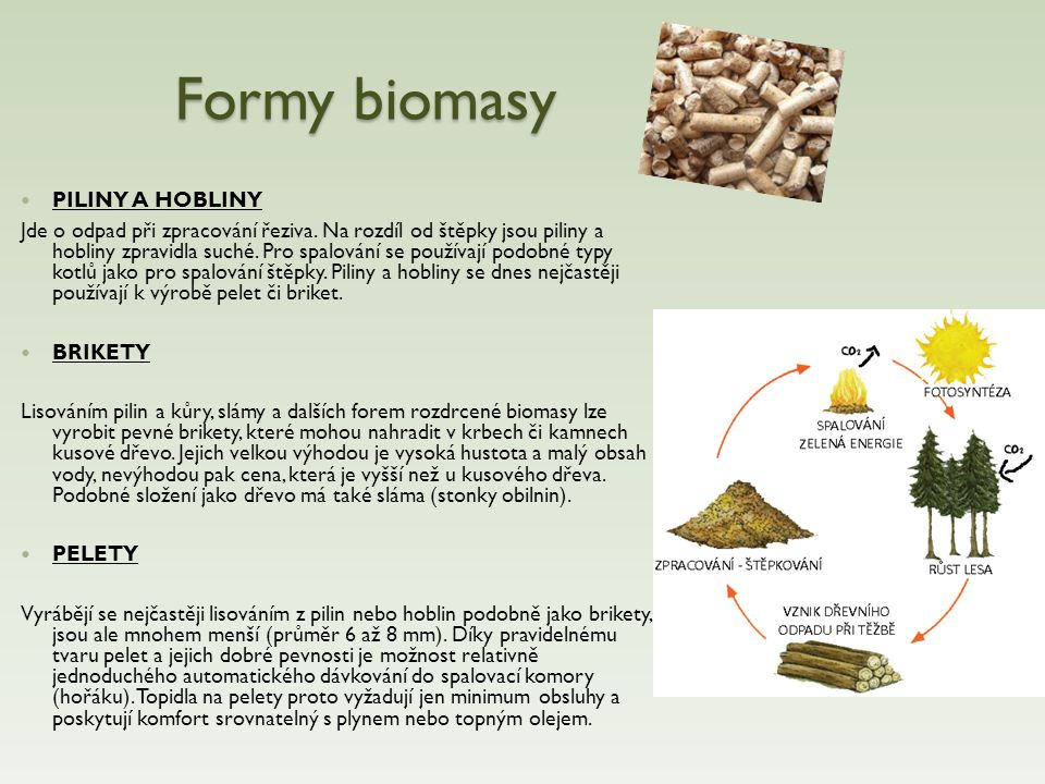 Formy biomasy PILINY A HOBLINY
