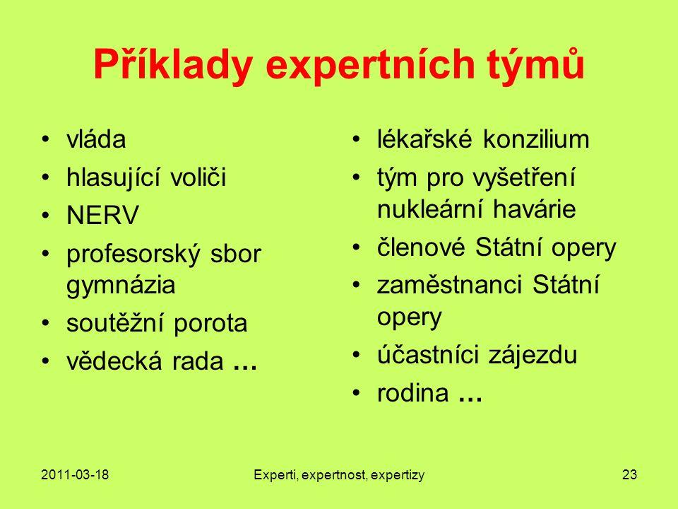 Příklady expertních týmů