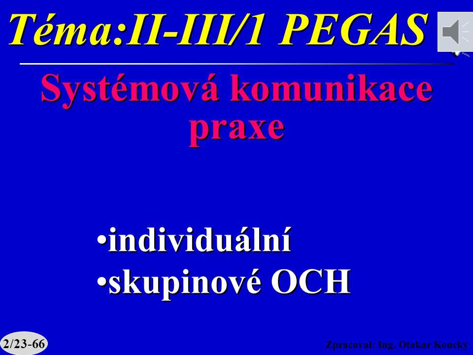 Téma:II-III/1 PEGAS Systémová komunikace praxe individuální
