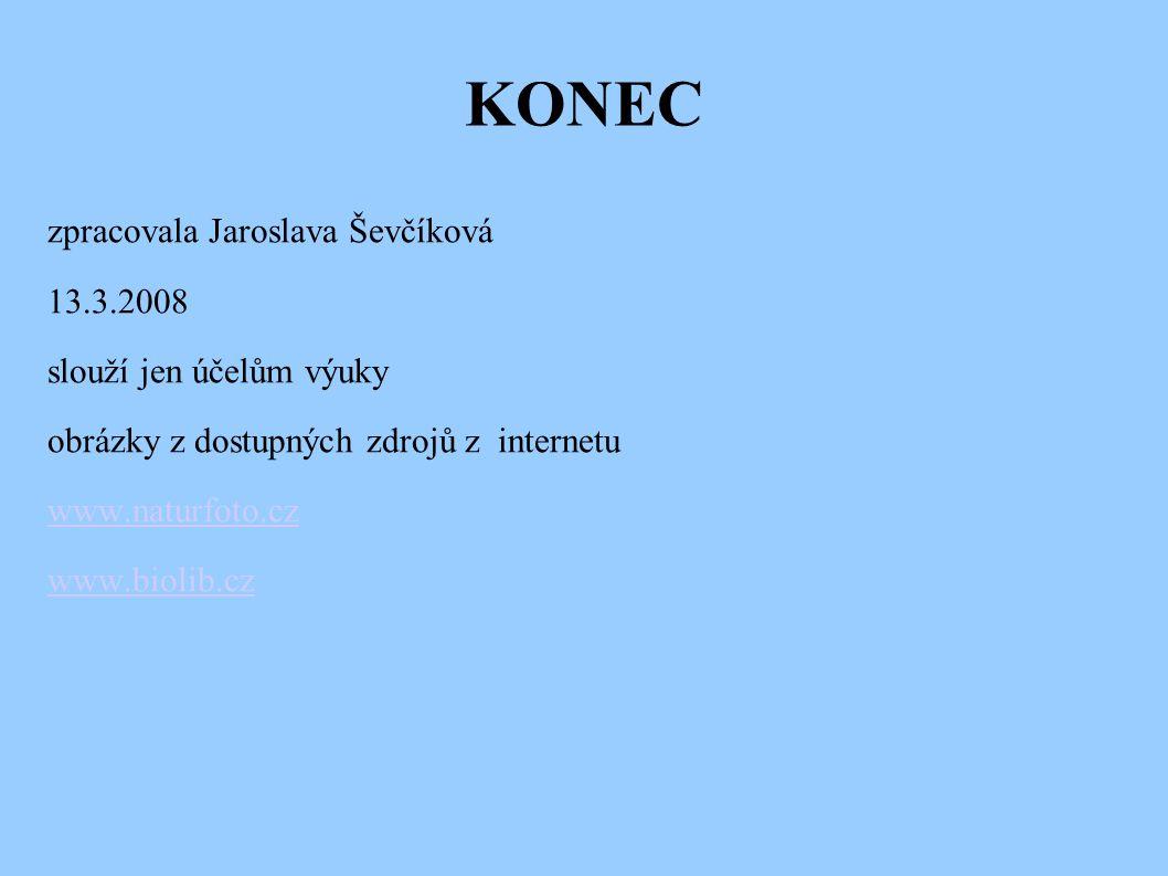 KONEC zpracovala Jaroslava Ševčíková 13.3.2008 slouží jen účelům výuky