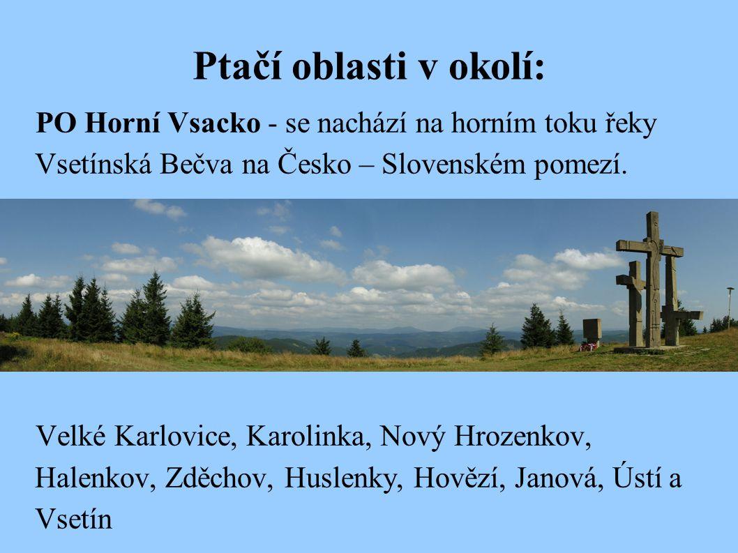 Ptačí oblasti v okolí: PO Horní Vsacko - se nachází na horním toku řeky Vsetínská Bečva na Česko – Slovenském pomezí.