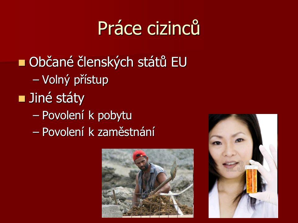 Práce cizinců Občané členských států EU Jiné státy Volný přístup
