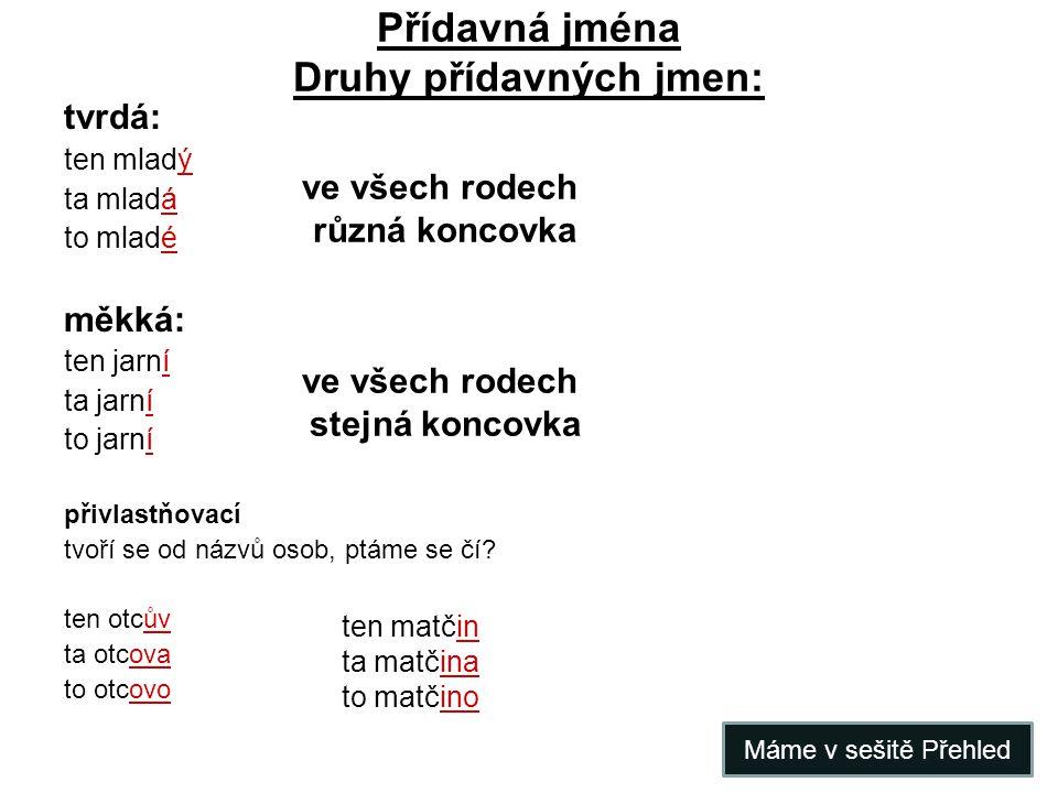 Přídavná jména Druhy přídavných jmen: